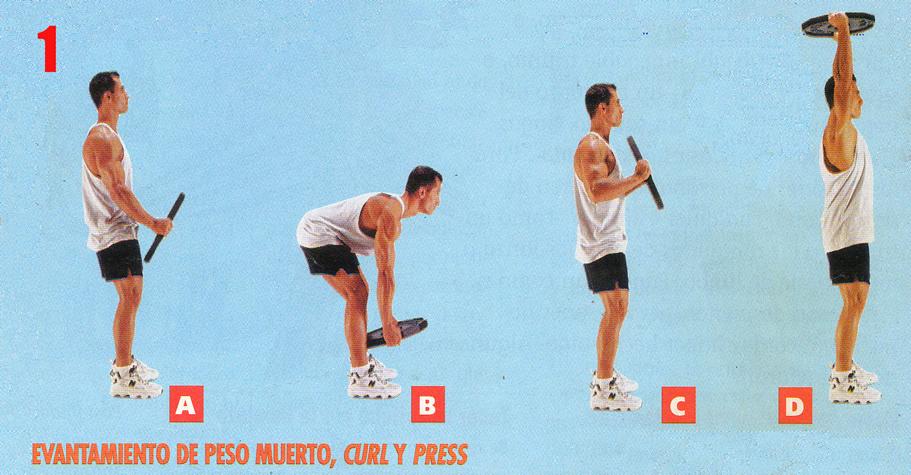 ejercicios para espalda baja de ponteciamiento