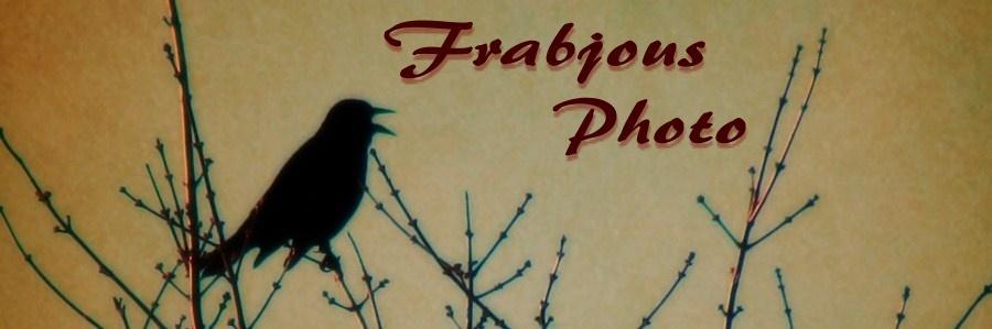 Frabjous Photo