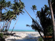 Beaches near Savusavu!