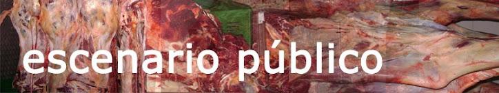 Escenario Público