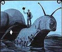 http://2.bp.blogspot.com/_Qzd9HIsRWeA/SSlKuTUROAI/AAAAAAAAQc4/3A9sFj_0Ffk/s400/Doctor+Dolittle+Snail.jpg