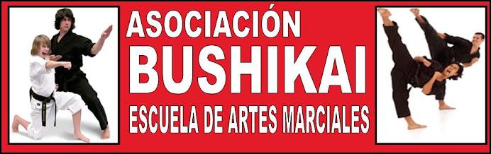 ASOCIACION BUSHIKAI ESCUELA DE ARTES MARCIALES