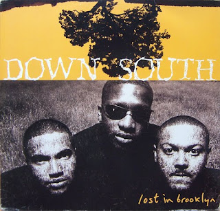 Down South Lost in Brooklyn