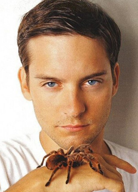 Male Celeb Fakes Best Of The Tobey Maguire American Actor
