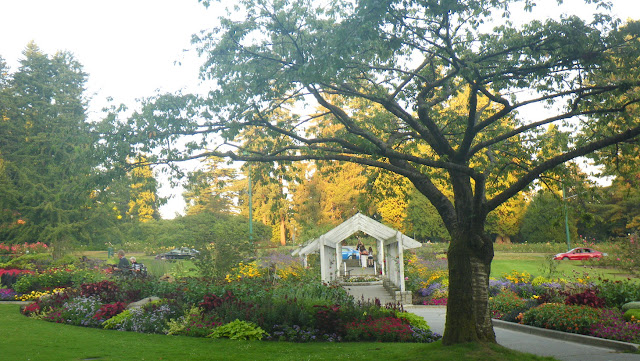 Rose Garden, flowerbeds with cherry tree, Stanley Park, Vancouver
