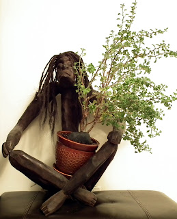 Asmat handcarved wood statue with Prince of Orange plant