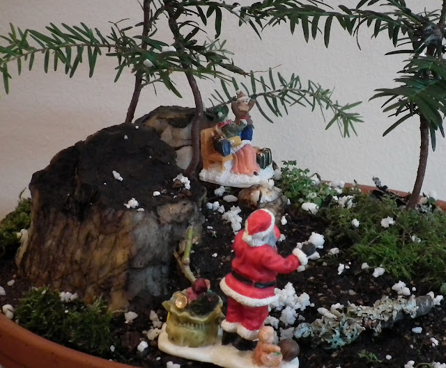 Santa Claus is coming to town - potted scenery