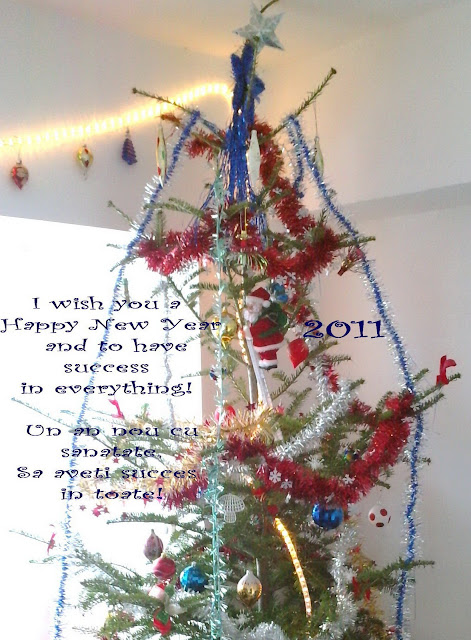 Best wishes for 2011