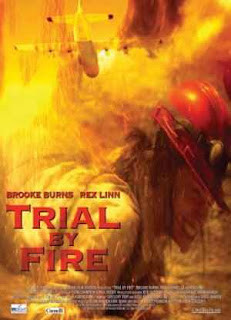 VER Trial by Fire (2008) ONLINE SUBTITULADA