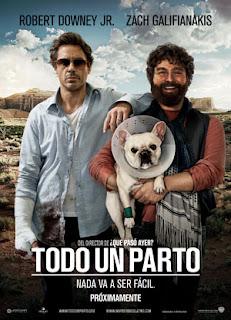 VER Todo un Parto (2010) ONLINE LATINO
