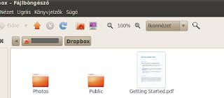 Dropbox ubuntu linux