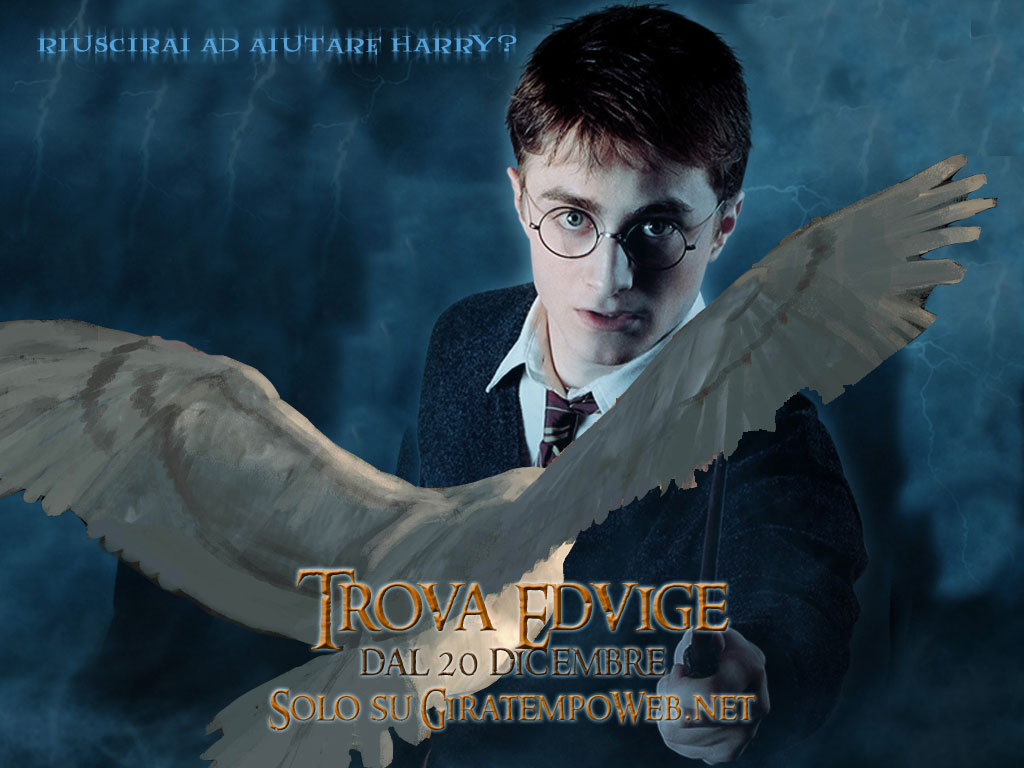 Free Harry Potter Wallpapers: Download Harry Potter Photos & Pictures