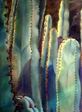 Organ Pipe Cactus