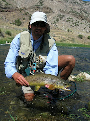 Wind River Canyon Brown