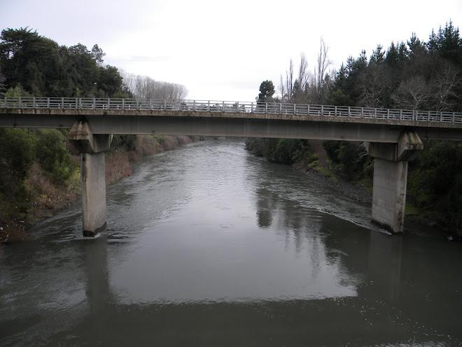 Puente Makewue Pelales