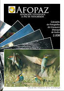 DESCARGA LA REVISTA 2008
