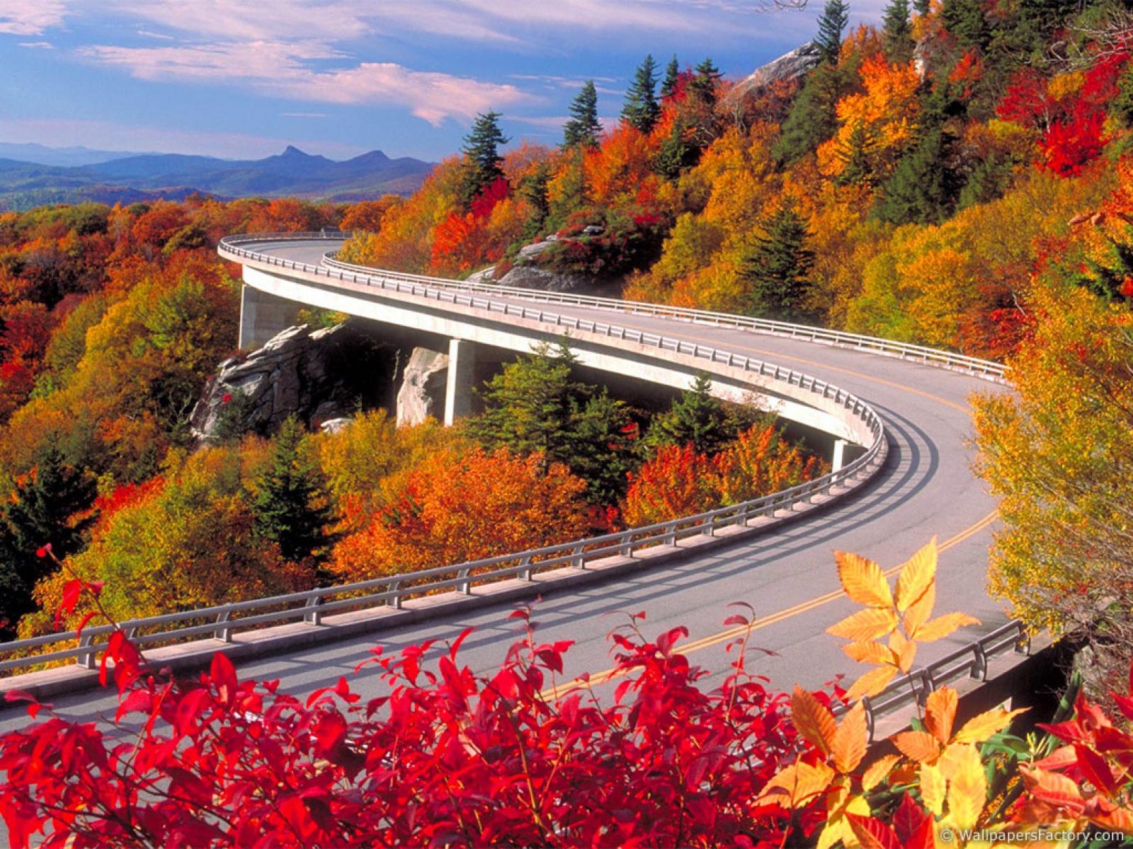 http://2.bp.blogspot.com/_RAlP3BmEW1Q/TQNjk1bVliI/AAAAAAAABOw/w1_lWicuii8/s1600/Herfst-achtergronden-herfst-wallpapers-39.jpg