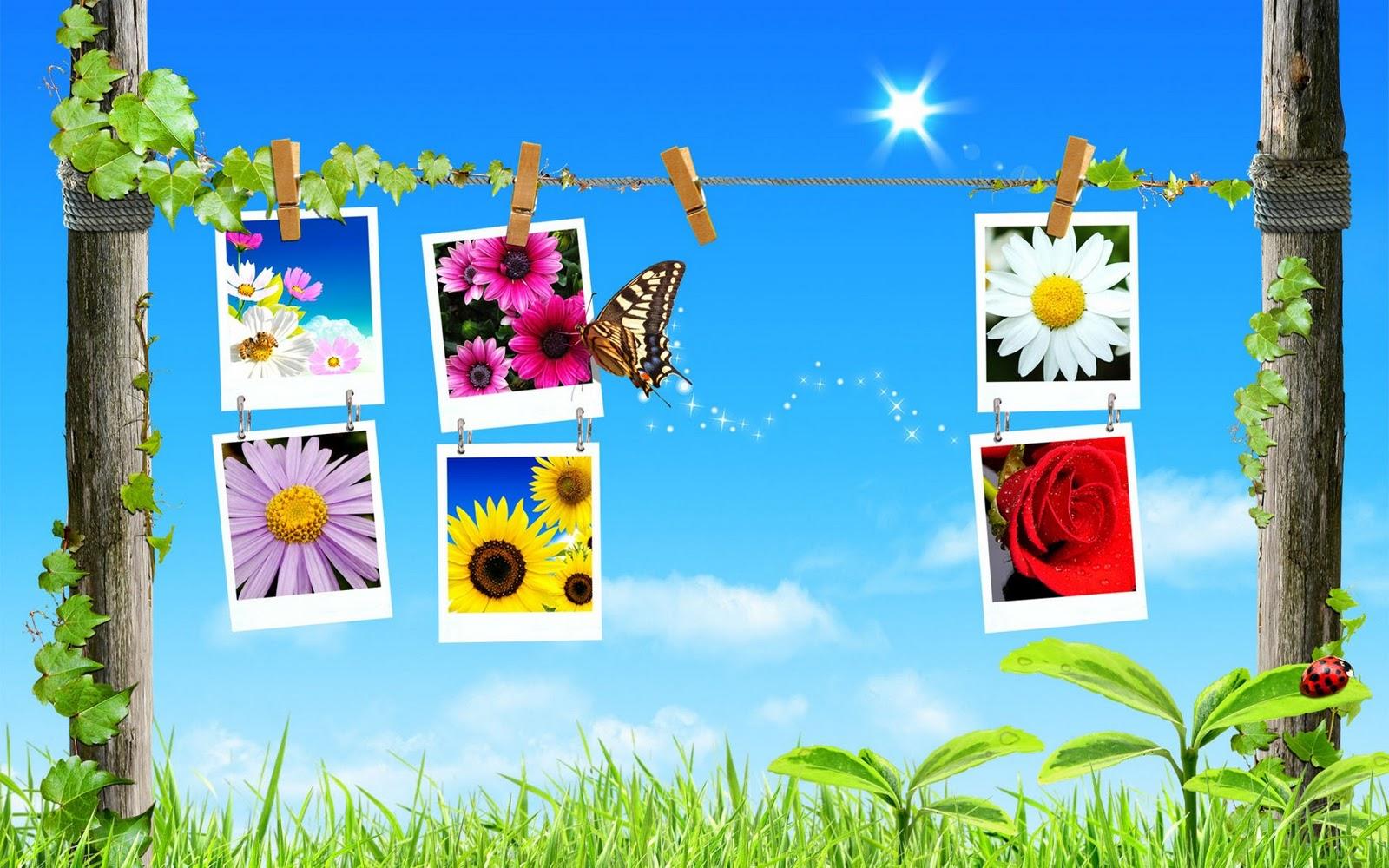 lente achtergronden hd - photo #14