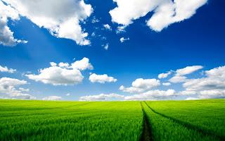 Weiland met wolken