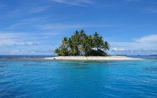 Eiland met palmbomen