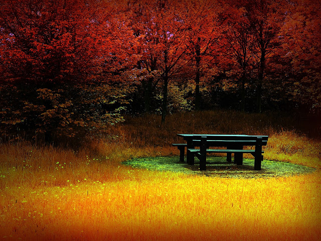 Autumn Wallpaper Background