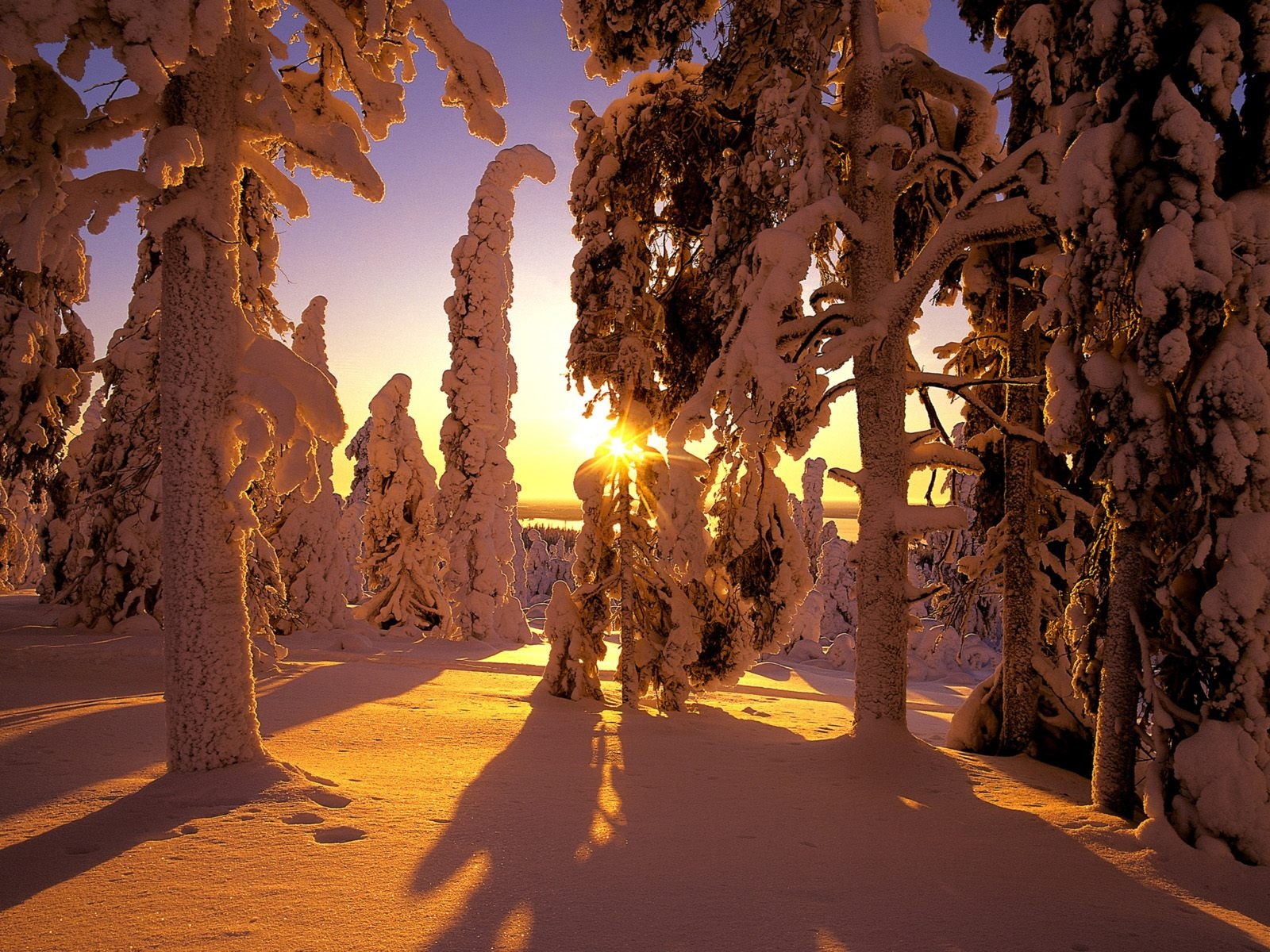 Zimski ugođaj :) - Page 4 The-best-top-winter-desktop-wallpapers-5