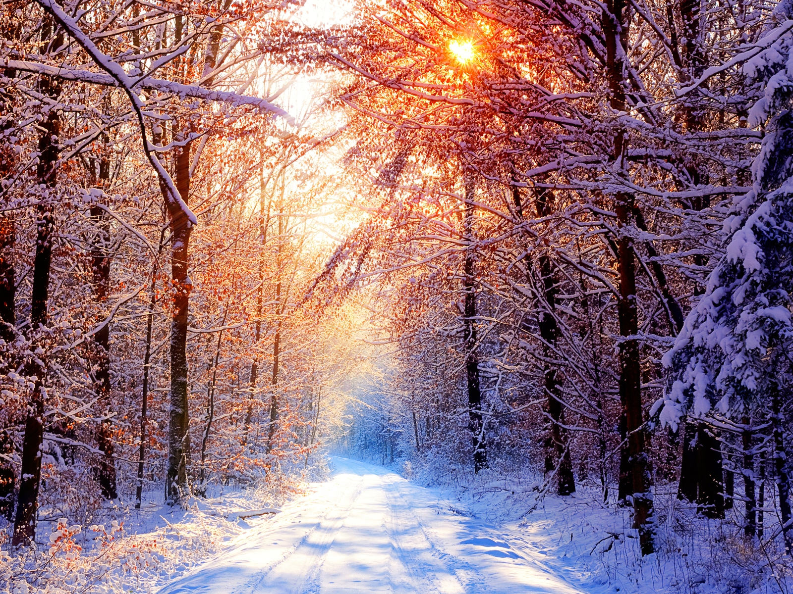 best top desktop hd wallpapers winter wallpapers