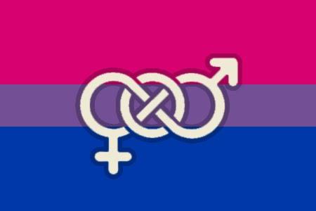 http://2.bp.blogspot.com/_RAoVoupD79I/S7T4-BdrVAI/AAAAAAAACMA/dy8kb0o0JOE/s1600/bisexualflag.jpg