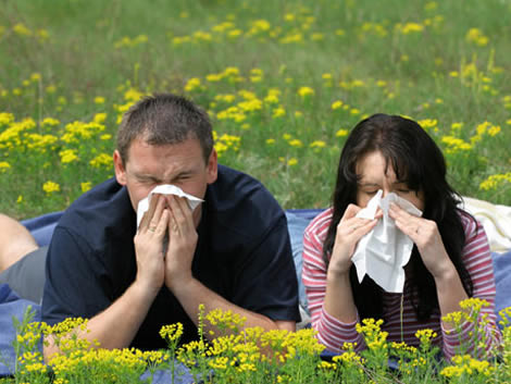 http://2.bp.blogspot.com/_RAoVoupD79I/S8bHzWJwMgI/AAAAAAAACVw/IMVKMNt1r2g/s1600/salud-evita-alergia-primavera.jpg