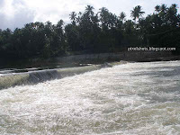 south-indian-rivers,indian-river-with-largest-fish-diversity,chalakkudy-puzha,athirapally-project-river,western-ghats-river