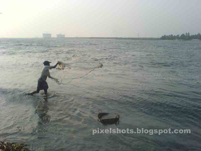 shallow water fishing with nets,sea shore fishing photos from beaches of kerala,fisherman throwing nets,catching fish in kerala beaches,fishing from tides