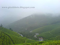 munnar photo galleries,hill stations in kerala,indian famous hill stations,hill stations under threat,kerelas coldest places,kerala tea plantations,hill station scenic landscapes,kerala landscape sceneries,rarest flowers seen in india,green hills with tea plantations and valleys landscape sceneries from hill station munnar of kerala