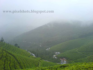 green hills with tea plantations and valleys landscape sceneries from hill station munnar of kerala