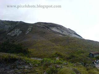 rajamala-hills-munnar,mountain-slop-covered-in-violet-flowers,mountain slope covered in neelakurinjy flowers in munnar tourist spot of kerala