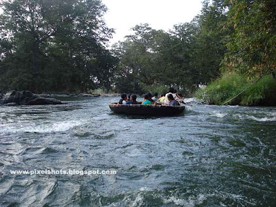 wild river adventure boat journey,basket boats moving through fast river current in hogenekkal a tamilnadu tourist spot in south india