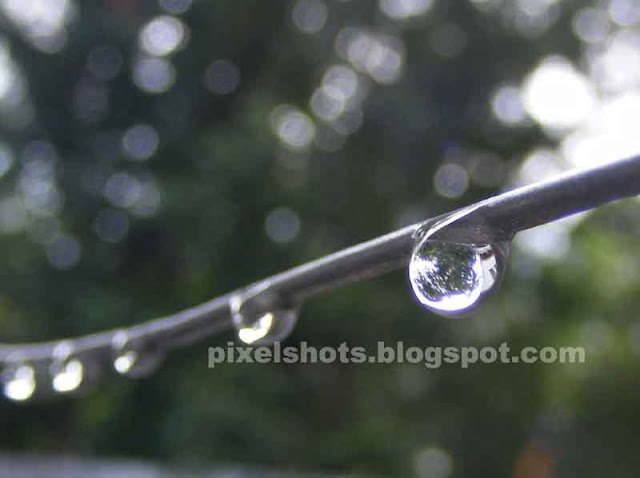 series of rain water drops in a steel wire,macro mode photography of water droplets,line of water drops