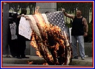 Illegal aliens burn American flag
