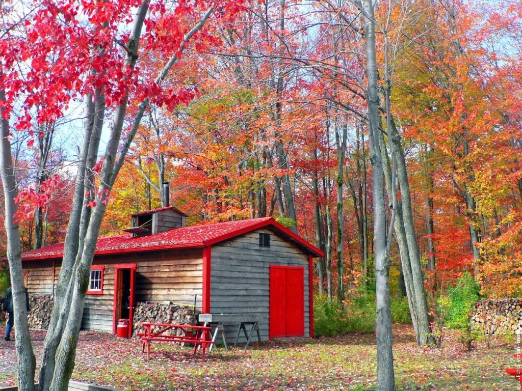 Ma cabane de Russie, chez Patricia et Gilles Info