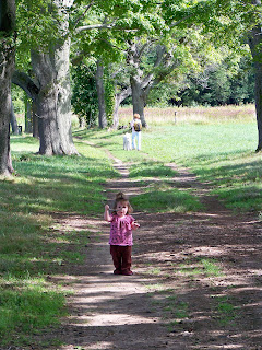 Dog Walking Hazel Grove