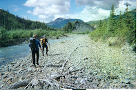 Caribou Creek Hiking