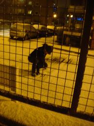 Bricks on toes Snow through chest