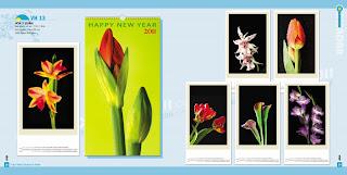 TRANG+028+ +029+%5BDesktop+Resolution%5D Catalogue Lịch Tết 2011