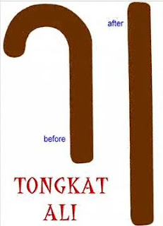 tongkat ali before and after