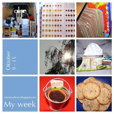 My week (8)