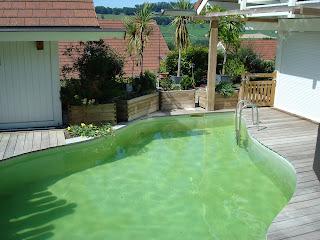 plage bois piscine naturelle