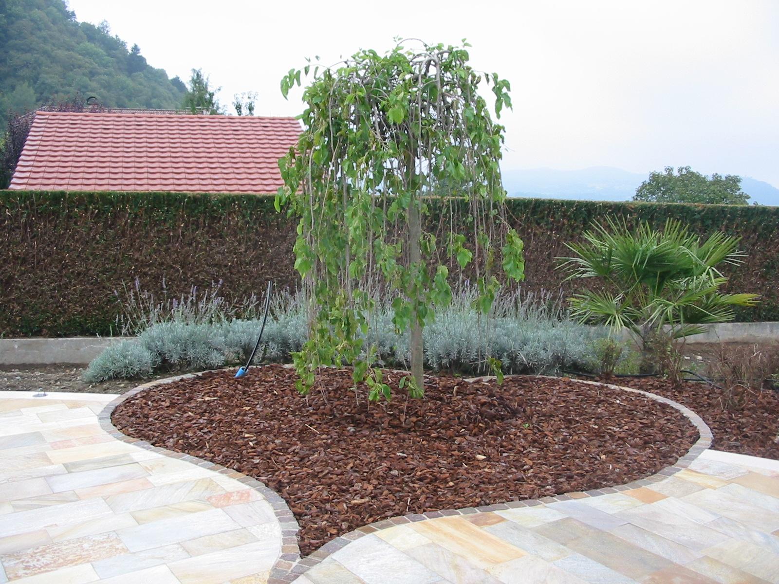 Paysagiste et am nagement de jardin thonon et annemasse plantations - Plantation d arbres synonyme ...
