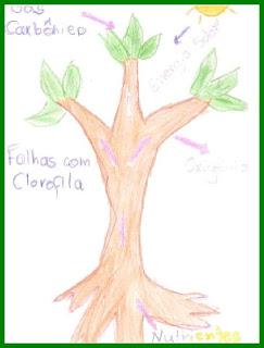 arvores3%2520gabriel Dia da Árvore Importância da Fotossíntese para crianças