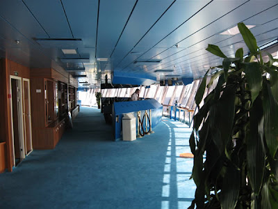 Emerald Princess Bridge