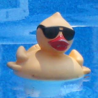 Ducky just skimming.