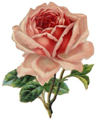 pink flower clip art free. clip art flowers free. flower